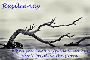 resiliency is valuable